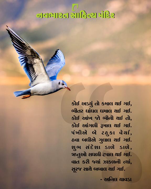 અનિલ ચાવડાની મજેદાર રચના ખાસ આપ સહુના માટે.  #NavbharatSahityaMandir #ShopOnline #Books #Reading #LoveForReading #BooksLove #BookLovers