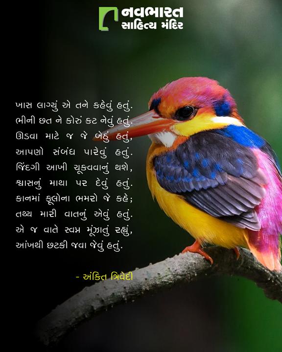 અંકિત ત્રિવેદીની મજેદાર કવિતા ખાસ આપ સહુના માટે.  #NavbharatSahityaMandir #ShopOnline #Books #Reading #LoveForReading #BooksLove #BookLovers