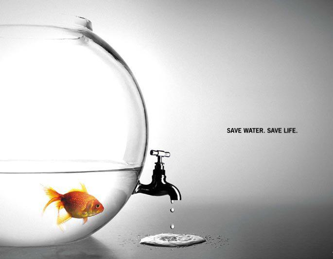 Save Water to Save the Future!
