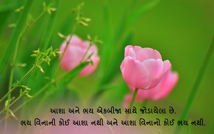 #GujaratiQuotes #MotivationalMondays #NavbharatSahityaMandir #GujaratiLovers #GujaratiLiterature